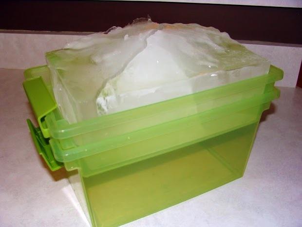 icebox 3 (1)