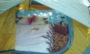 Room for a queen size mattress w/ 5 x 7 left over for gear.